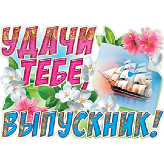 Плакаты, Удачи тебе, выпускник!,  (10 шт.), 19 р. за 1 шт.