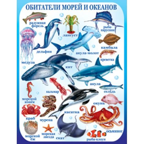 Плакаты, Обитатели морей и океанов,  (10 шт.), 33 р. за 1 шт.