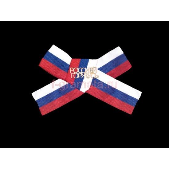 Значки на День России, Значок